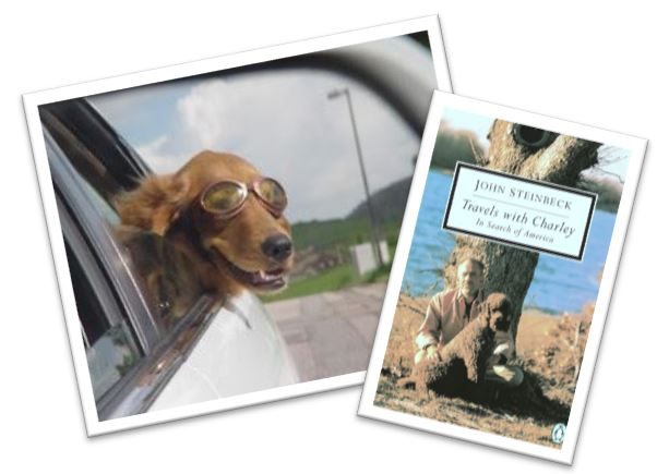 image: dog in car, and Travels with Charley book cover