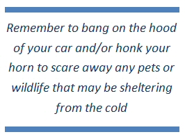 Remember to bang on the hood of your car and/or honk your horn to scare away any pets or wildlife that may be sheltering from the cold